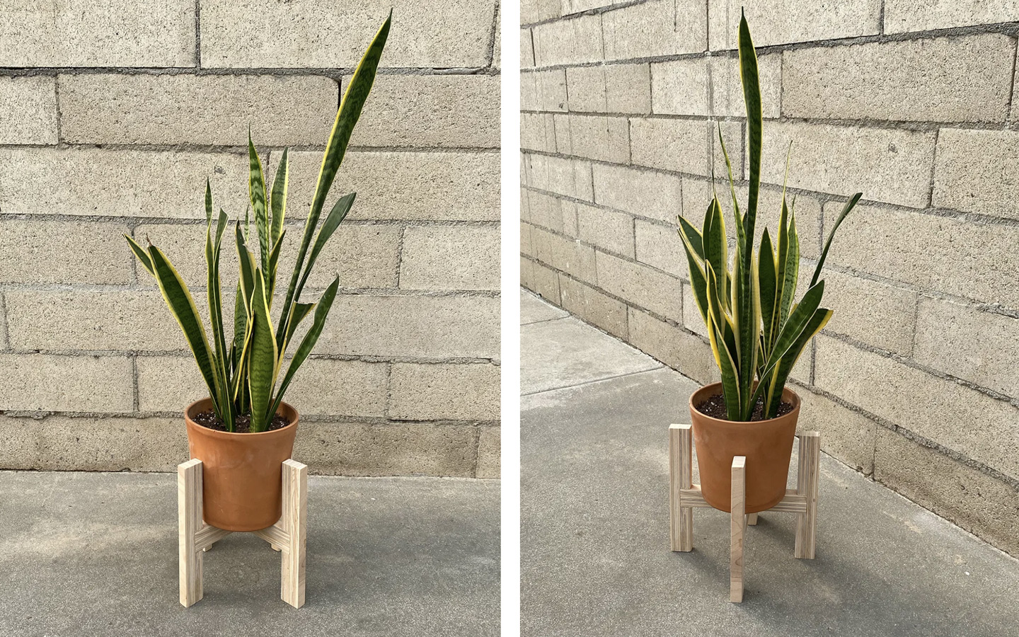Schuler - Woodworking - Plant Stand from Birch Plywood